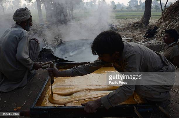 Pakistani farmers pouring boiled sugarcane juice in a wooden tray for making traditional sweet item Gurr slices in a traditional way in their field...