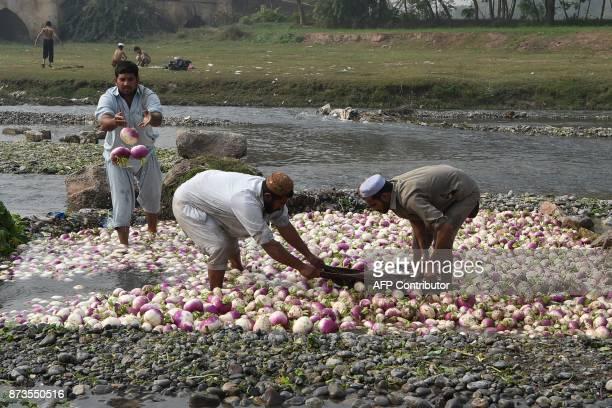 Pakistani farmers wash turnips along a river on the outskirts of Peshawar on November 13 2017 / AFP PHOTO / ABDUL MAJEED