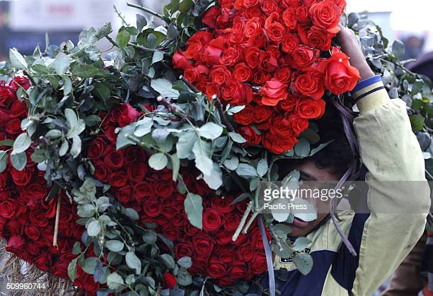 Pakistani flower vendor displays fresh roses and garlands to attract the customers during a big flower whole sale market for upcoming Valentines Day...