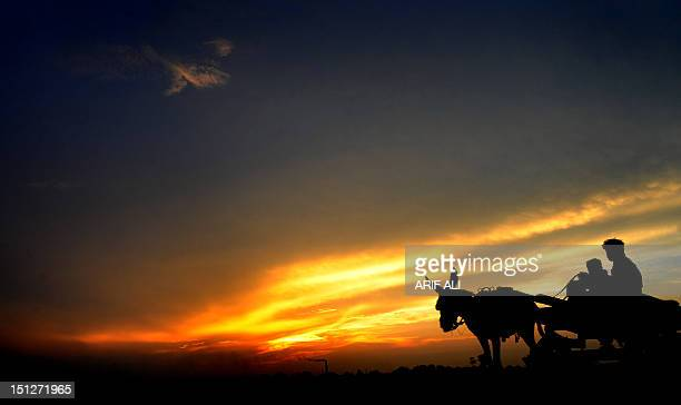 A Pakistani man rides his donkey cart as the sun sets in Lahore on September 5 2012 Flash floods triggered by heavy rain on Wednesday killed at least...