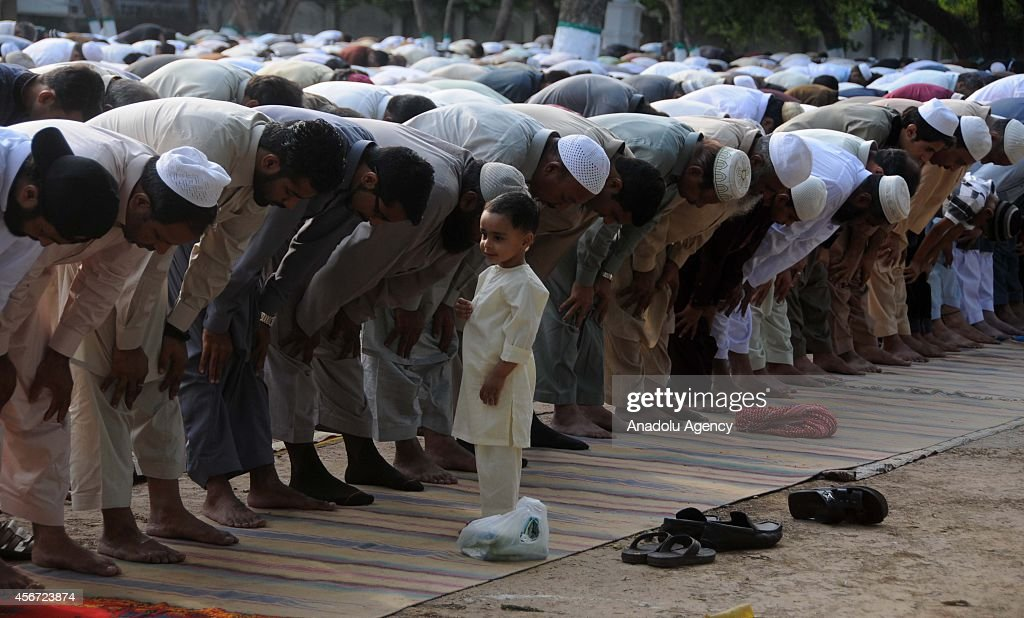 Pakistani muslims tie the legs of sacrificial animals on the first day of Eid alAdha in Rawalpindi Pakistan on October 6 2014