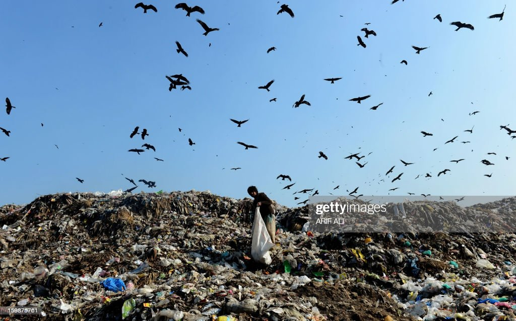 A Pakistani scavenger searches for recyclable materials at a landfill site in Lahore on January 22, 2013. AFP PHOTO/Arif ALI