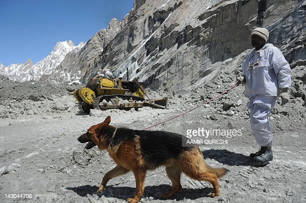 A Pakistani soldier works with a sniffer dog to search for avalanche victims during an ongoing operation at the Gayari camp near the Siachen glacier...