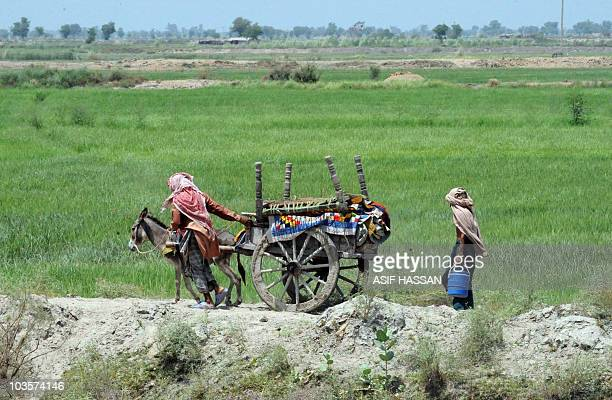 Pakistani villagers evacuate with their belongings on a donkey cart as the area was threatened by rising floodwaters in Shahdadkot on August 22 2010...