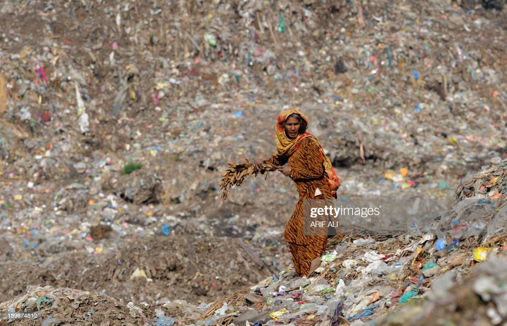 A Pakistani woman collects fire wood at a landfill site in Lahore on January 22, 2013. AFP PHOTO/Arif ALI