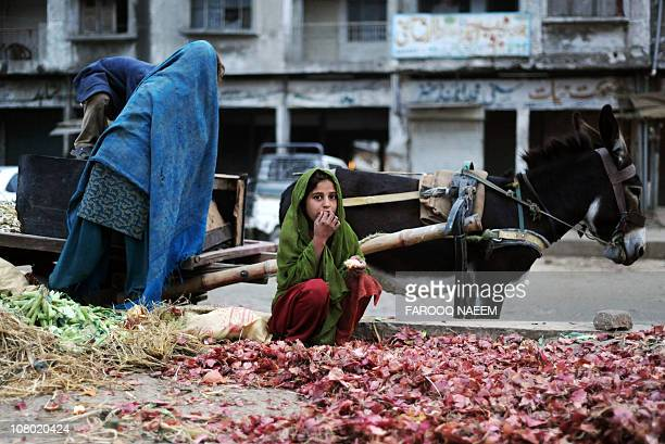FOCUSIn this picture taken November 27 a Pakistani girl collects onions in the garbage of vegetable market in Islamabad Pakistan's middle classes are...
