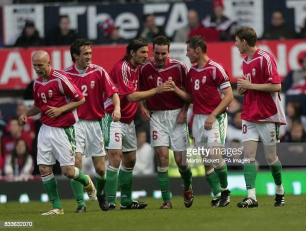 Pal Dardai celebrates after scoring for Hungary