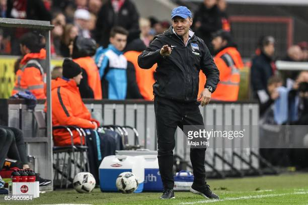 Pal Dardai head coach of Berlin during the Bundesliga match between 1 FC Koeln and Hertha BSC at RheinEnergieStadion on March 18 2017 in Cologne...