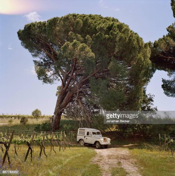Palacio el Rincon is photographed for Vanity Fair Spain on May 27 2016 in Madrid Spain