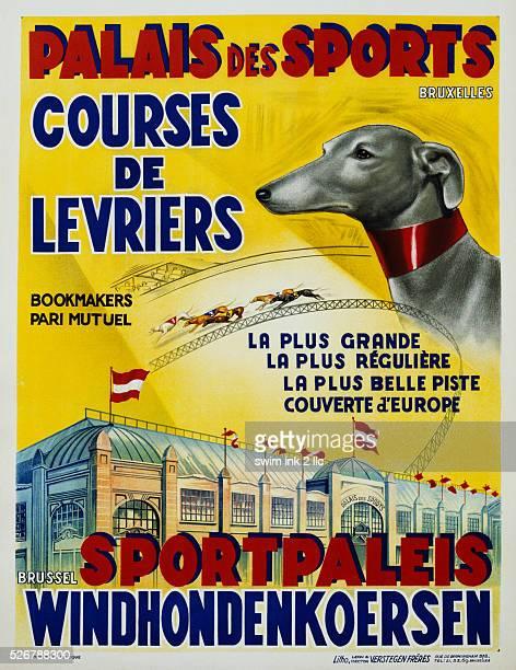 Palais des Sports Courses de Levriers Sportspalais Windhondenkoersen Dog Racing Poster