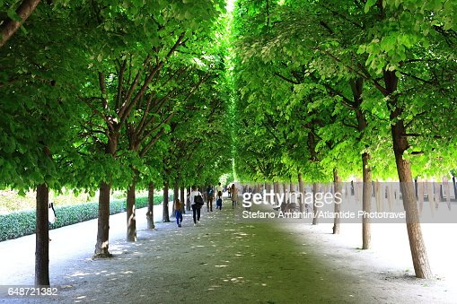 Palais Royal, the garden : Foto stock