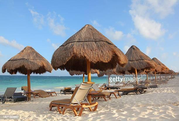 Palapas et chaises longues sur une plage tropicale