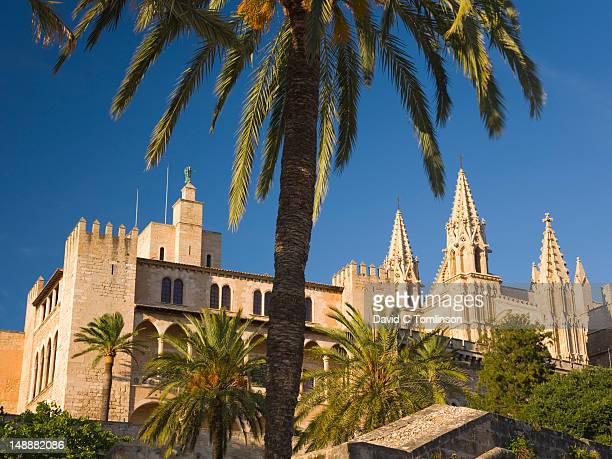 Palau de l'Almudaina and cathedral, La Seu, framed by palm-trees.