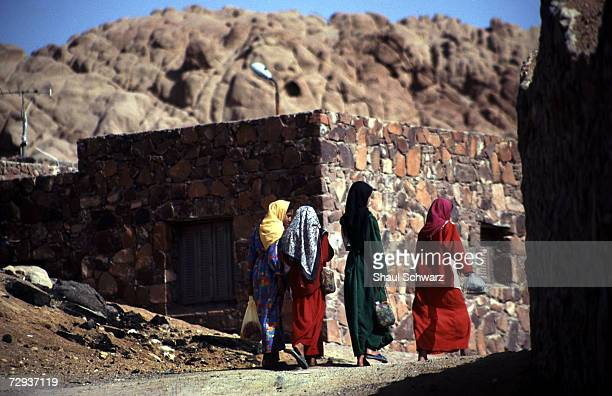 Palestinian bedouin women walk in the Sinai Desert in Egypt Bedouins are Arab nomadic pastoralist groups primarily found in the Middle East where...