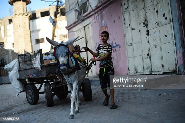 A Palestinian boy leads a donkey cart as he cleans garbage in Jabalia in the northern Gaza Strip on August 14 2014 Israel and militants in Gaza were...