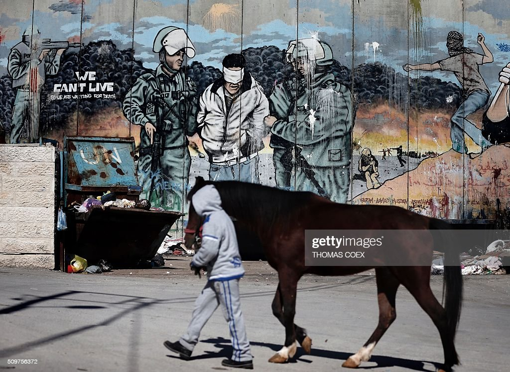 A Palestinian boy walks with a horse past graffiti painted on Israel's controversial separation barrier in the Aida refugee camp situated inside the West Bank city of Bethlehem, on February 12, 2016. / AFP / THOMAS COEX