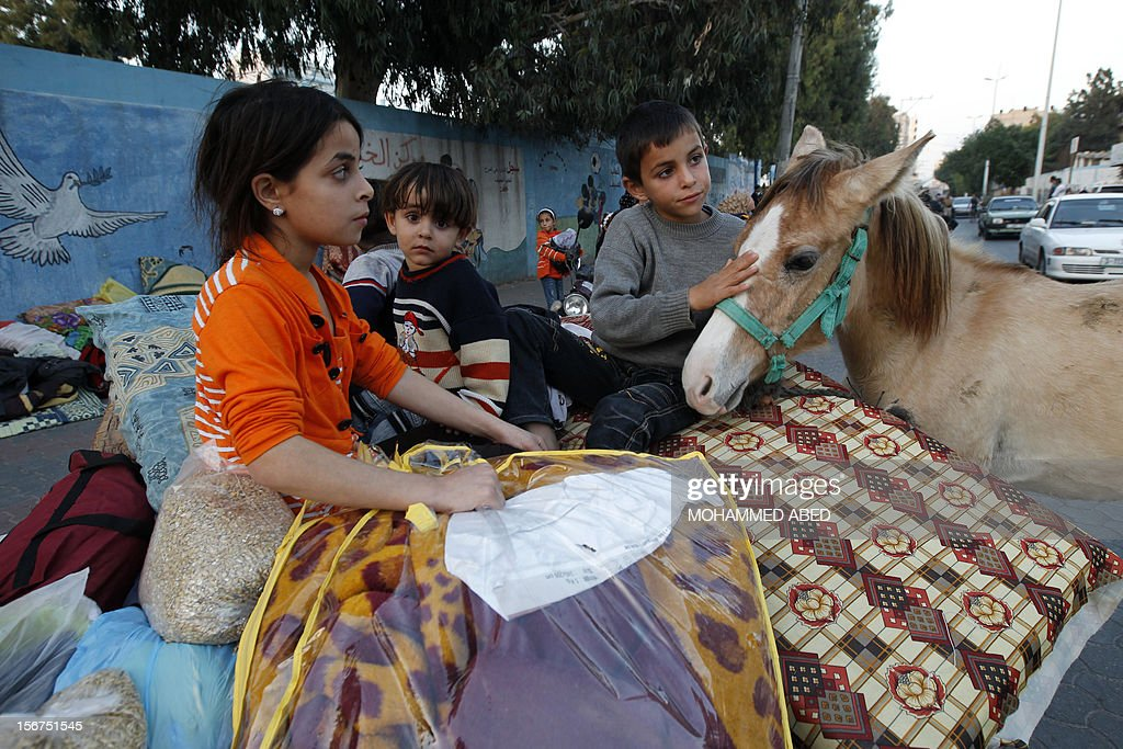 A Palestinian child hugs a horse after he and his family evacuated their homes to take shelter at a United Nations (UN) school in Gaza City on November 20, 2012. A group of 38 aid agencies urged the international community to take action to secure a ceasefire in Gaza to prevent 'another widespread humanitarian disaster.'