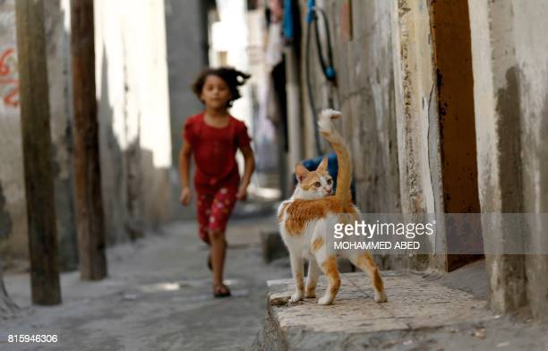 A Palestinian girl runs towards a cat outside her house in Gaza City on July 17 2017 / AFP PHOTO / MOHAMMED ABED
