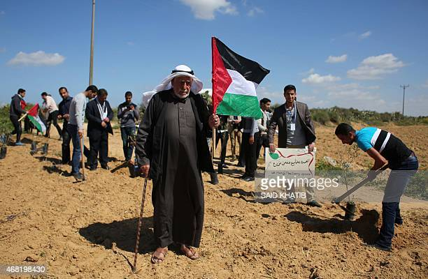 A Palestinian man holds his national flag as Palestinians plant olive trees to mark Land Day during a symbolic ceremony held in the village of...