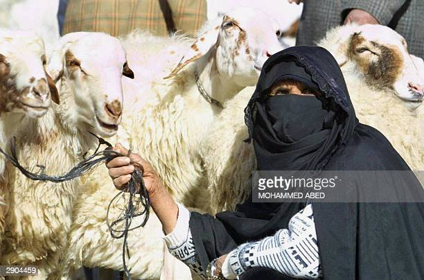 Palestinian peasant displays sheep for sale at a market in Rafah refugee camp in the southern Gaza Strip 27 January 2004 as Muslims prepare for the...