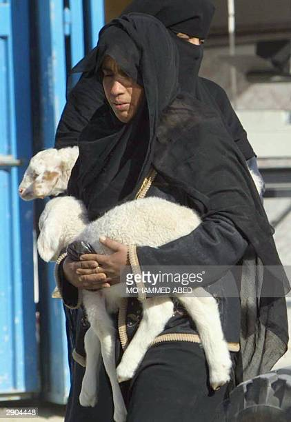 Palestinian woman carries a little lamb she bought at a market in Rafah refugee camp in the southern Gaza Strip 27 January 2004 as Muslims prepare...
