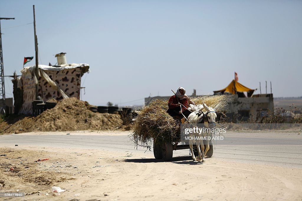 A Palestinian woman rides a donkey-pulled-cart past areas where Hamas militants were located near the border with Israel east of Gaza City, on May 5, 2016. Israeli forces uncovered a Hamas tunnel stretching across the border, the Israeli army said, the second such discovery in recent weeks. Army spokesman Peter Lerner said the tunnel was 28-29 metres deep and stretched into Israeli territory, though he did not say how far. ABED