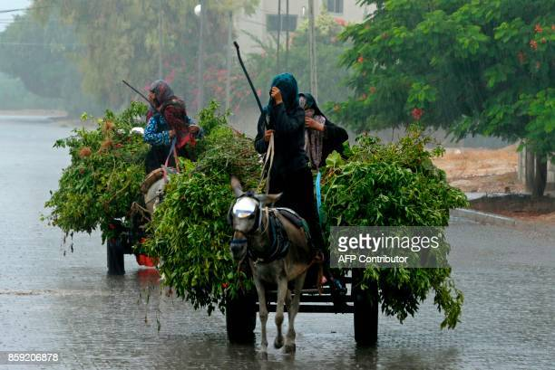 Palestinian women ride donkeydrawn carts in the rain in Gaza City on October 9 2017 / AFP PHOTO / MAHMUD HAMS / The erroneous mention[s] appearing in...
