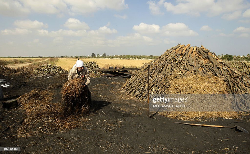 A Palestinian worker covers a pile of wood with hay which is part of the process of turning wood into coal at one of the few local charcoal manufacturing plants east of Gaza City on April 23, 2013.