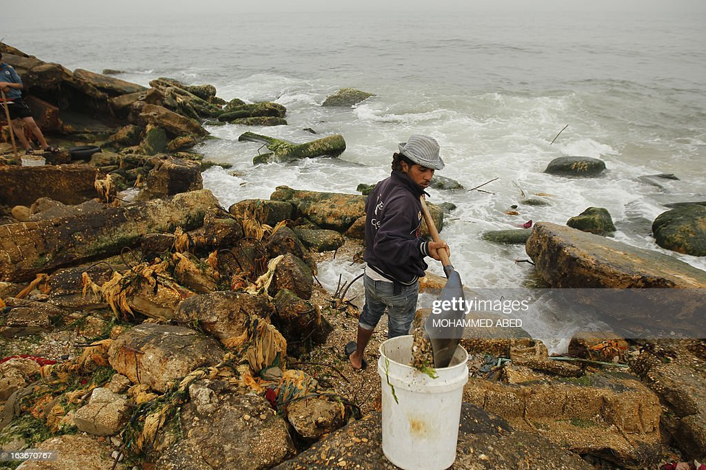 A Palestinian youth collects small pebbles from the beach for use in construction work and decorating houses in Gaza City on March 14, 2013.
