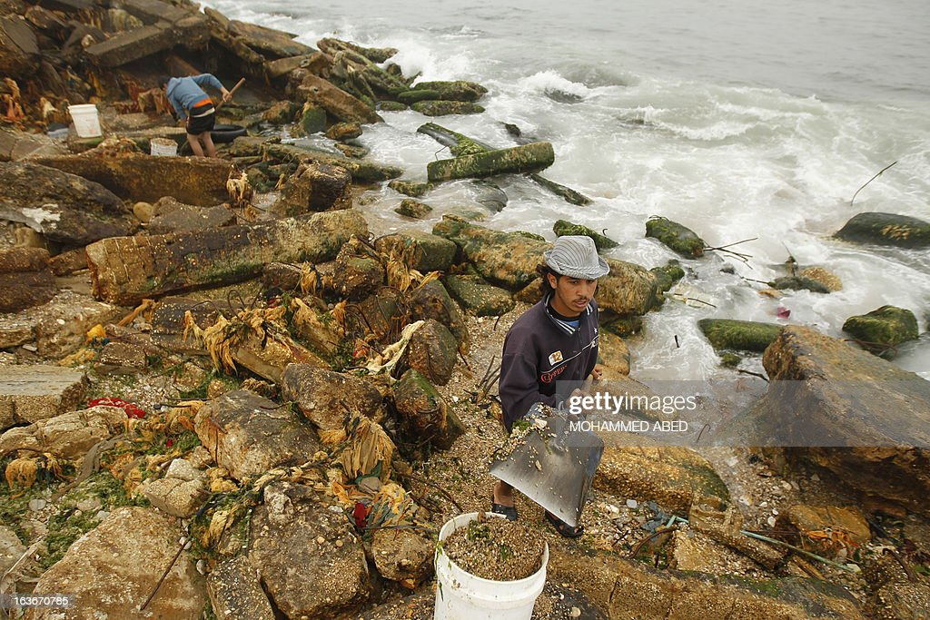 Palestinian youths collect small pebbles from the beach for use in construction work and decorating houses in Gaza City on March 14, 2013.