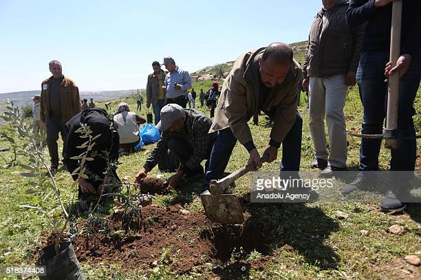 Palestinians attend tree planting ceremony in the memory of 206 Palestinians who killed by Israeli soldiers since last october during the...