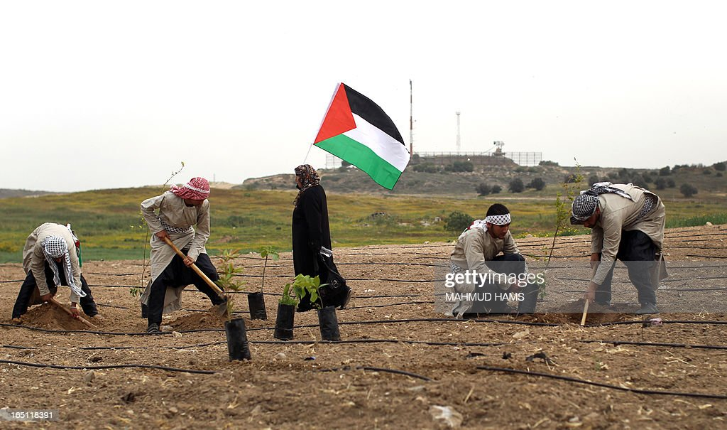 Palestinians dressed up as farmers plant trees as they take part in a rally marking Land Day in Beit Hanun in the northern Gaza Strip close to the border with Israel on March 31, 2013. The annual demonstrations mark the deaths of six Arab Israeli protesters at the hands of Israeli police and troops during mass protests in 1976 against plans to confiscate Arab land in the northern Galilee region.