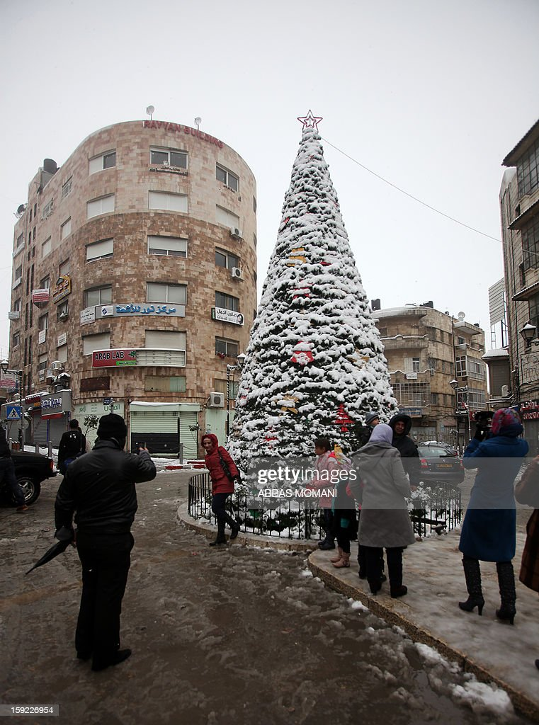 Palestinians pose for pictures in front of a Christmas tree that was covered with snow following a storm in the West Bank city of Ramallah on January 10, 2013. Abnormal storms which have blasted the Middle East with rain, snow and hail have claimed at least 11 lives in a region accustomed to temperate climates. AFP PHOTO/ABBAS MOMANI