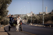 Palestinians ride a donkey on December 01 2010 near the West Bank town of Qalqilya Since 2000 SHADH have rescued over 1000 donkeys and horses and...