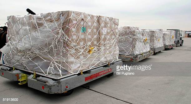 Pallots full of AmeriCares medical and humanitarian supplies for victims of the Indian Ocean tsunami are taken to a NWA Cargo plane at Detroit...