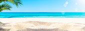 palm sand beach banner