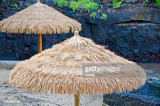 Palm Beach Umbrellas