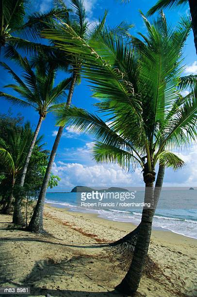 Palm Cove, with Double Island beyond, north of Cairns, Queensland, Australia
