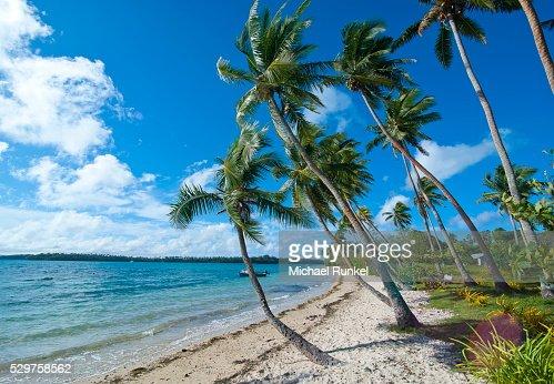 Palm fringed white sand beach on an islet of Vavau, Vavau Islands, Tonga, South Pacific, Pacific