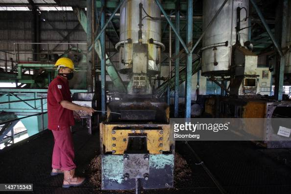 Palm fruit is compressed in a screw press machine for oil extraction at the PT Bakrie Sumatera Plantations palm oil factory in Kisaran North Sumatra...