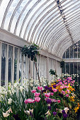 Palm House in Belfast. Belfast, Northern Ireland, United Kingdom.