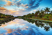 Tropical scene at sunrise with palm trees reflected in the water in Maraontsetra, Madagascar