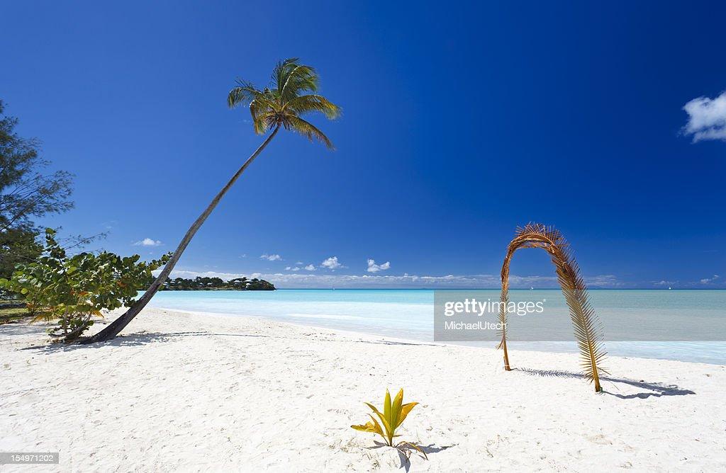 Palm Leaf Arch At Beach