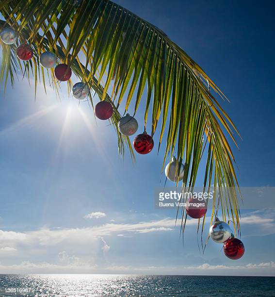 Palm leave with christmas ornaments.