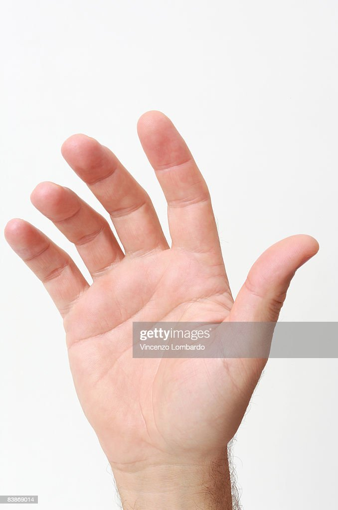 Palm of man's hand  on White Background. : Stock Photo