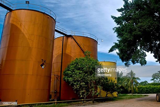 Palm oil is stored in tanks at a production facility in Cumaral Colombia on Friday Oct 1 2010 Palm oil futures rallied for a sixth week as a weak...