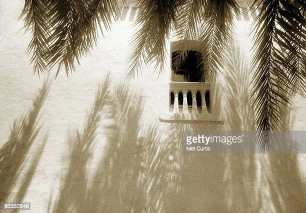 Palm shadows on building in Andulusia, Spain
