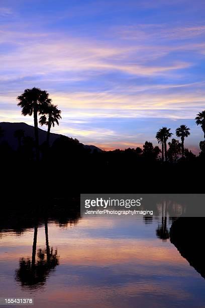 Palm Springs Sunset