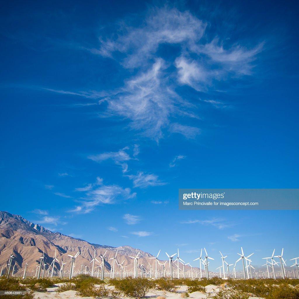Palm Springs wind farm and wind turbine : Stock Photo