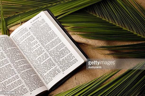 Palm domingos Biblia y Palms ramas